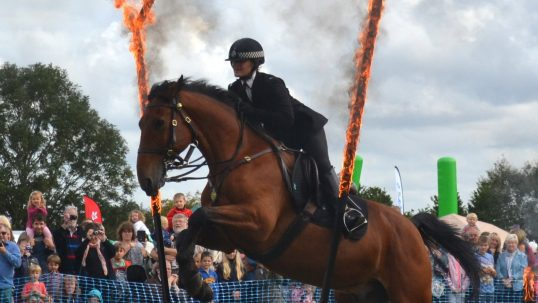 open day horse fire