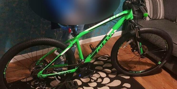 Stolen Giant-make bike