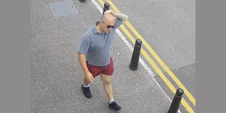 CCTV image of a man in a grey top and red shorts