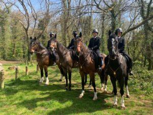 Group picture of police horses and their riders. (L-R) PH Trinity, PH Worlebury, PH Somerset and PH Windsor